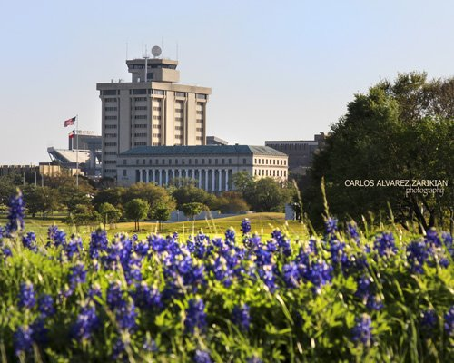 Spring time at Texas A&M University